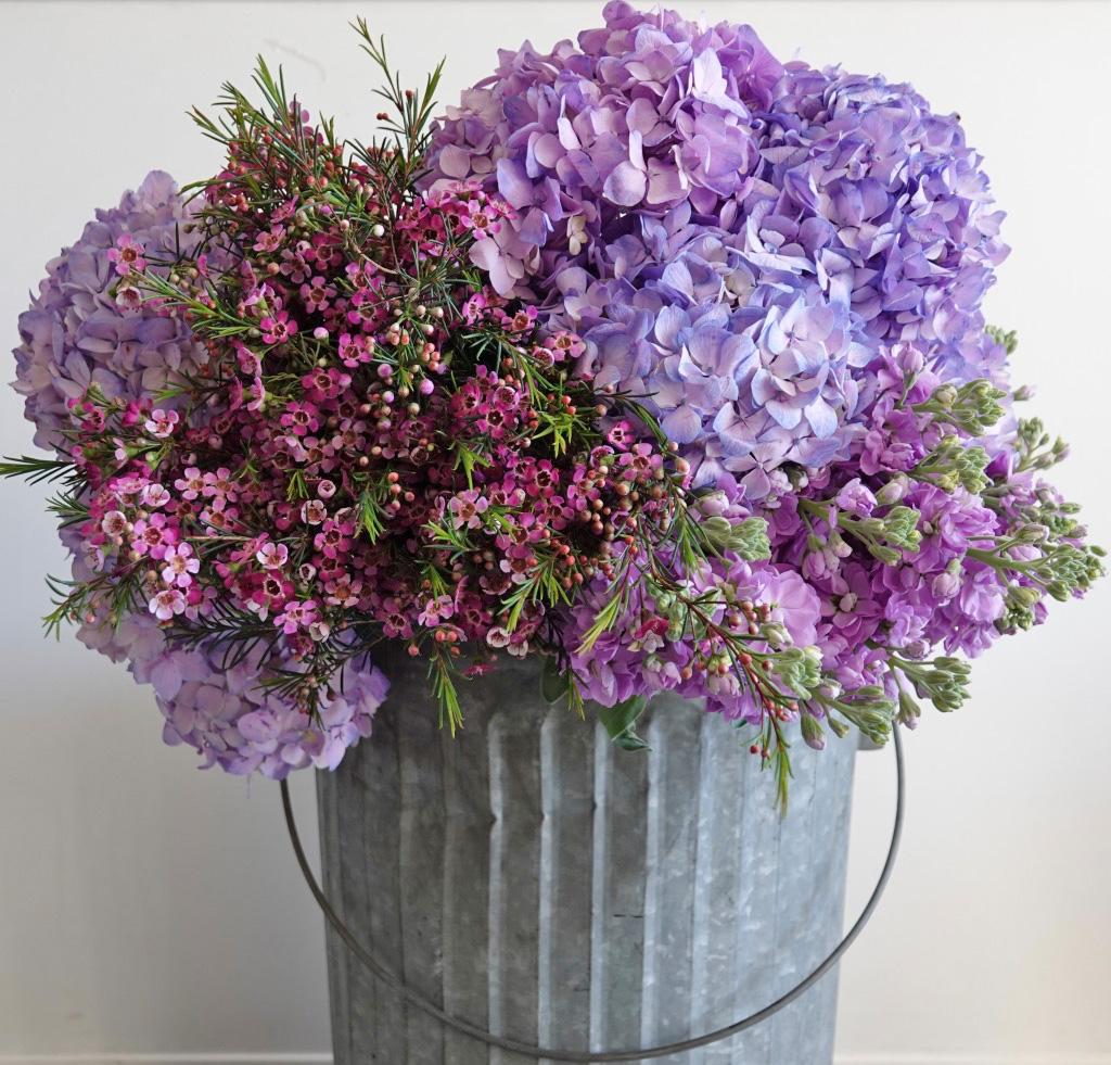 Buckets of Blooms…